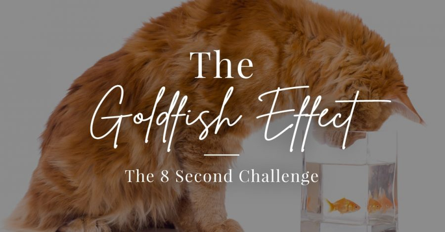 Goldfish Effect: The 8 Second Challenge