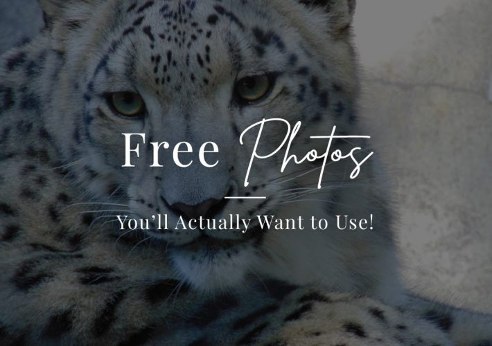 Find Free Photos You'll Actually Want to Use