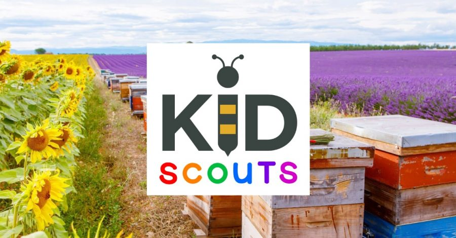blog case study kid scouts non profit website