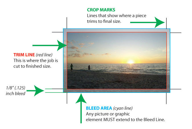 trim and bleed graphic