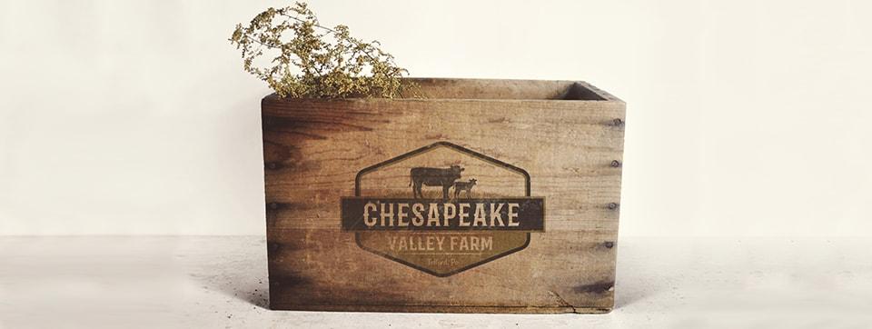 chesapeake valley farm logo mockup